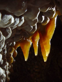 "Small draperies on calcite crystals: the ""jewels"" of Jewel Cave.  Photo by Art Palmer."