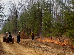 Ingition of a prescribed burn at Big South Fork National River and Recreation Area