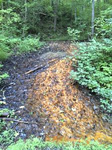 Contaminated mine discharge from former coal mine portal.