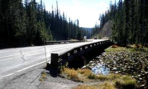 The existing Isa Lake bridge at Craig Pass. (NPS Photo)