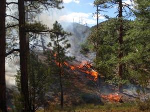 Photo of fire in Bandelier National Monument.