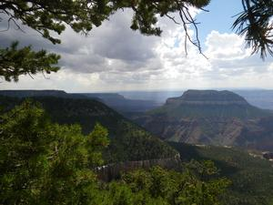 View of Grand Canyon from Powell Plateau