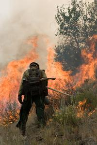 A firefighter initiating a prescribed burn (NIFC image)