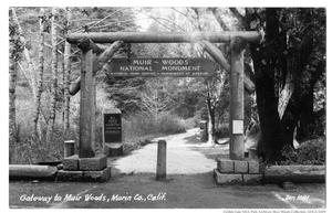 "Historic black and white photo of the Muir Woods entrance with text handwritten on the bottom left corner reading ""Gateway to Muir Woods, Marin Co., Calif."". Photo provided by Golden Gate NRA, Park Archives, Muir Woods Collections, GOGA 32470."