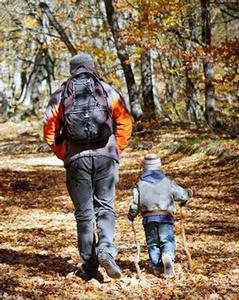 A photo of adult and child hiking on natural dirt trail through forest in autumn.
