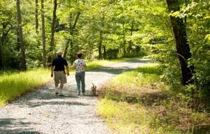 Man and women with the small dog on a leash walking trail in Prince William Forest Park on a sunny fall day.  Leaves have changed color from green to yellow and brown.