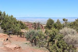 A campsite at the Saddlehorn Campground, surrounded by pinyon pine and juniper trees with a view of Grand Valley.