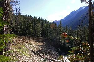 A photo from the Thunder Creek Trail looking upstream and across at an approximately 100-foot tall bluff above Thunder Creek.  This is in the vicinity of McAllister Hiker and Stock Camps.  The area behind the bluff is forested with coniferous trees that are 50 to 100 feet tall.  In the background is a craggy mountain with snow near its top.