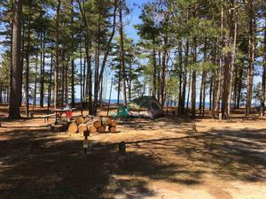 Campsite at Twelvemile Beach Campground. Tent on camp pad. Picnic table, fire ring, wood. Site is surrounded by pine trees and includes a view of Lake Superior.