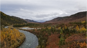 View of Moose Creek running through Moose Creek Valley. The valley is full of fall's colors with reds, oranges, and yellows, but colors are muted due to overcast skies.