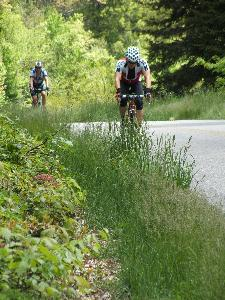 Bicycle riders on the Blue Ridge Parkway